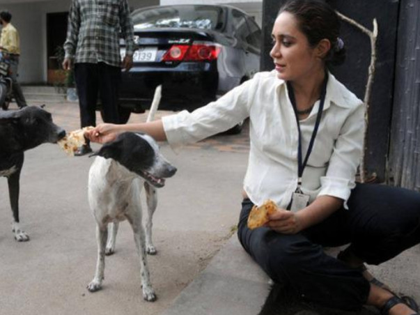 Help Anjali buy a rescue van for saving stray dogs