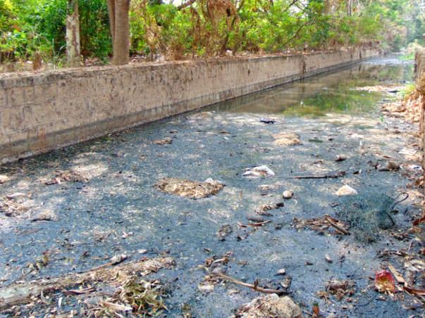 Peace Ride: Restoration of Chellakere Lake