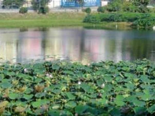 Peace Ride: Lake Restoration, Uttarahalli