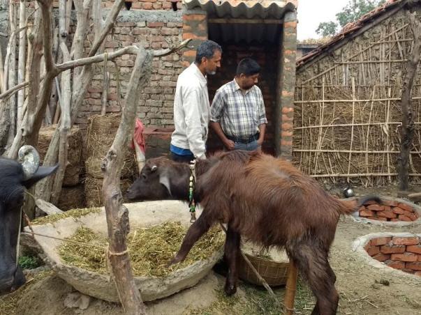 Open Defecation Free Dharbhanga