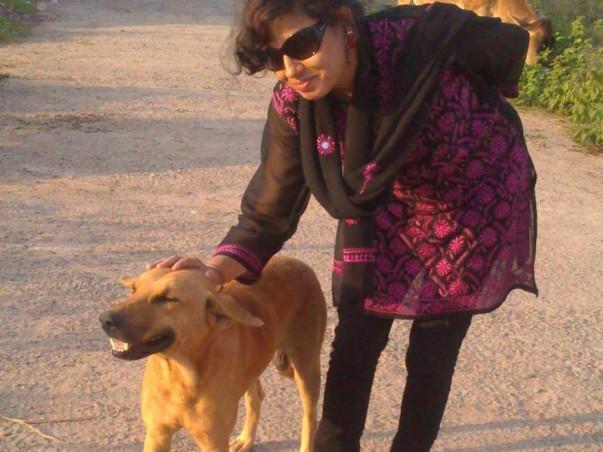 Help Meelan Keep Up Feeding And Caring My 50-70 Stray Dogs