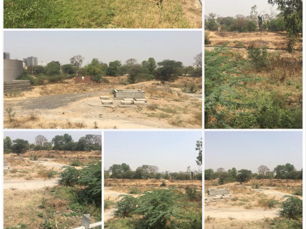 Support us to Develop Green Belt in Vasna Barrage on Sabarmati River