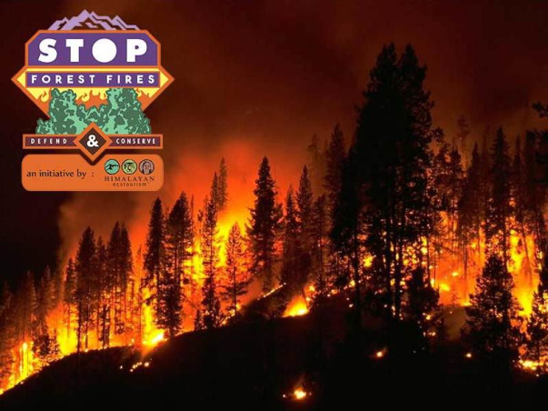 Let's Save The Himalayas From Fires