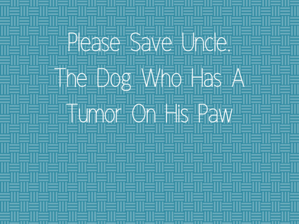 Please Save Uncle, The Dog Who Has A Tumor On His Paw