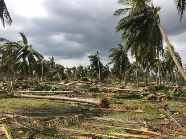 Gaja Cyclone Relief - Farmers Cauvery Delta Region in Tamilnadu