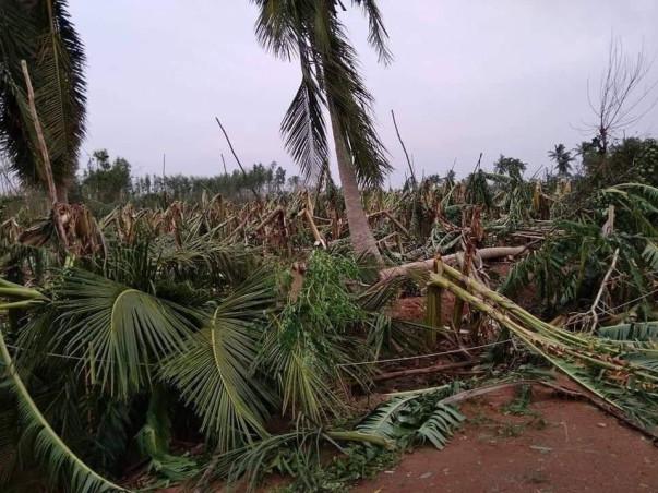 Help us Provide Relief in Peravurani (Delta) Due to Gaja Cyclone