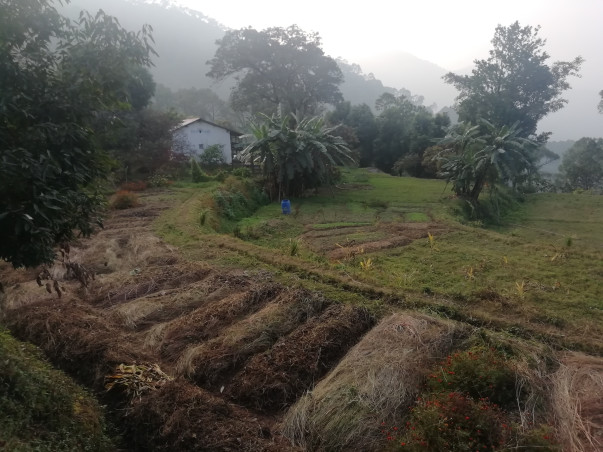 Help Us To Make Himalayan Farm Project Sustainable