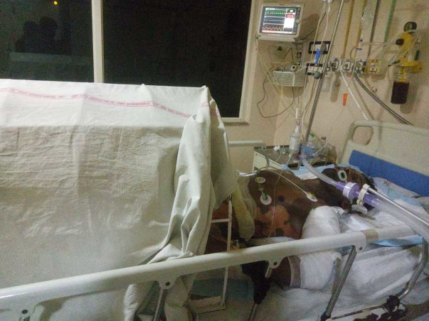 Help Prasad To Fight Against Accident