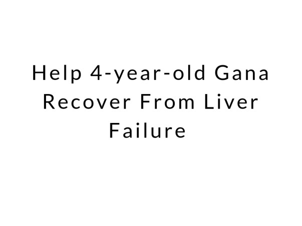 Help 4-year-old Gana Recover From Liver Failure