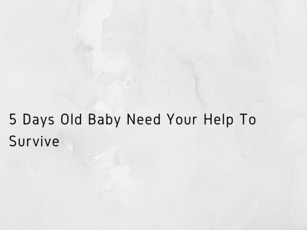 5 Days Old Baby Need Your Help To Survive