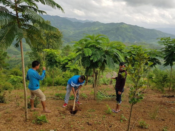 Massive Plantation Drive in Kanga Ching, Tellou, Manipur