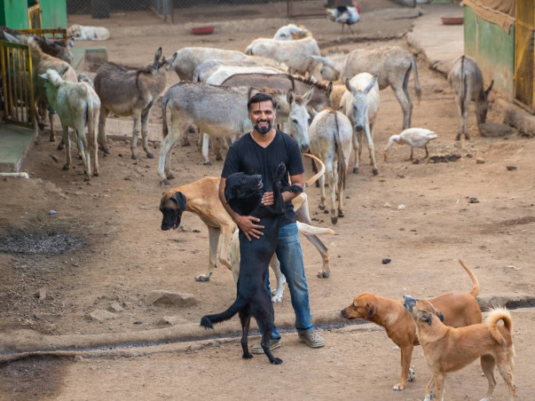 Help Sameer feed and take care of 400+ injured and abandoned animals