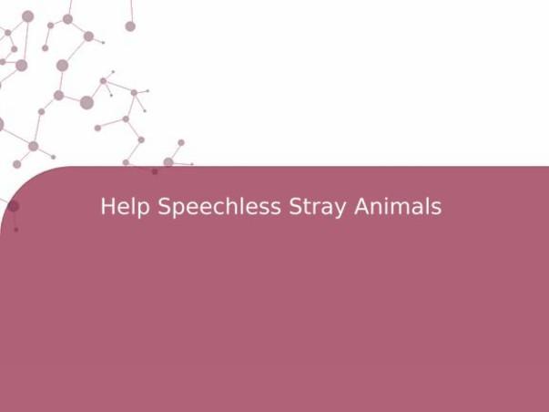 Help Speechless Stray Animals
