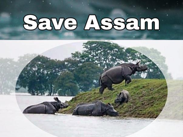 Assam needs help