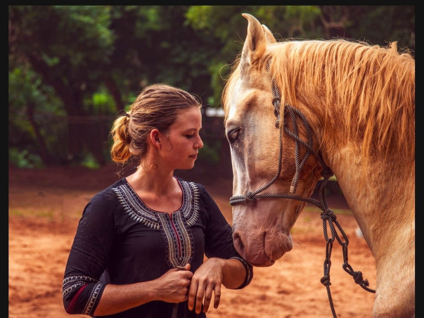 Funding Horse2Human: Help Us Build a Self-Sustainable Future!