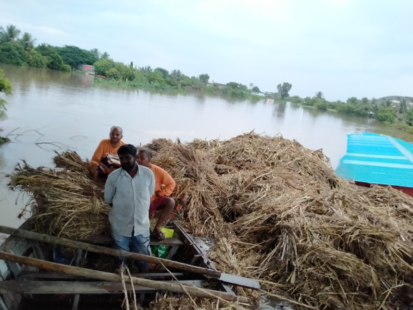 Help Pilgrims to fight the flood