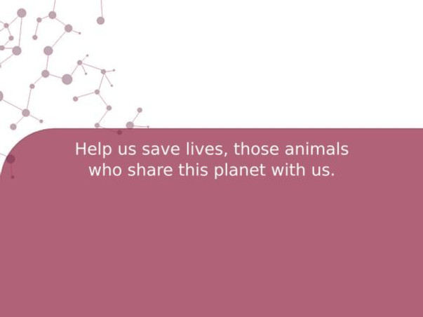 Help us save lives, those animals who share this planet with us.