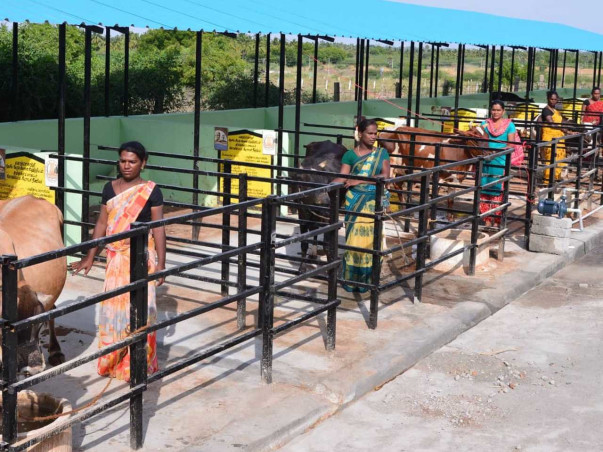 Support First Transgender Run Cooperative Society in Sandeep Nagar, TN