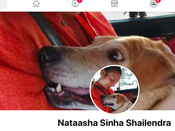 Help Nataasha Feeding,sterlisation and providing medical aid to stray