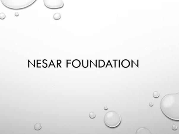 Nesar Foundation