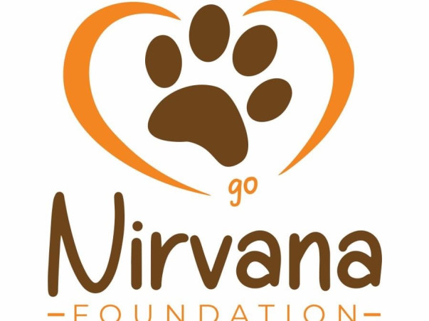 Mission Food For Every Stray Animals