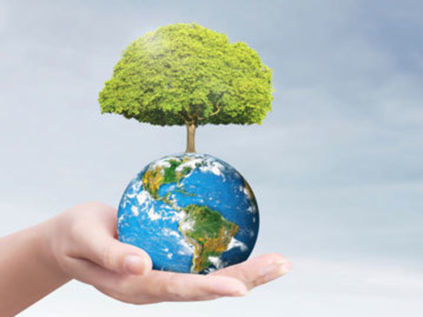 Help Syed build a more sustainable Planet..