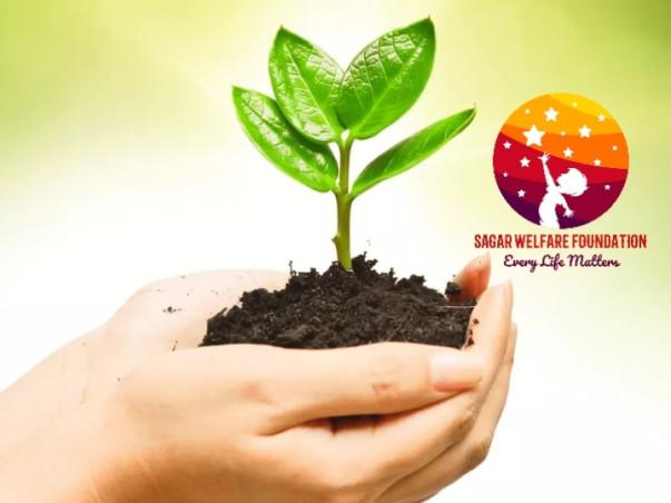 Sagar Welfare Foundation Project: Plantation