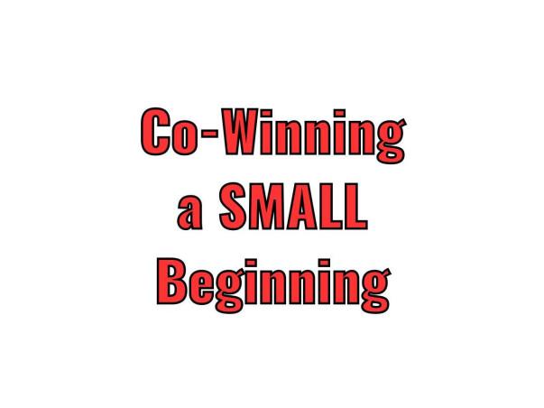 Co-winning, a SMALL Beginning
