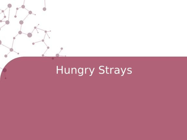 Hungry Strays