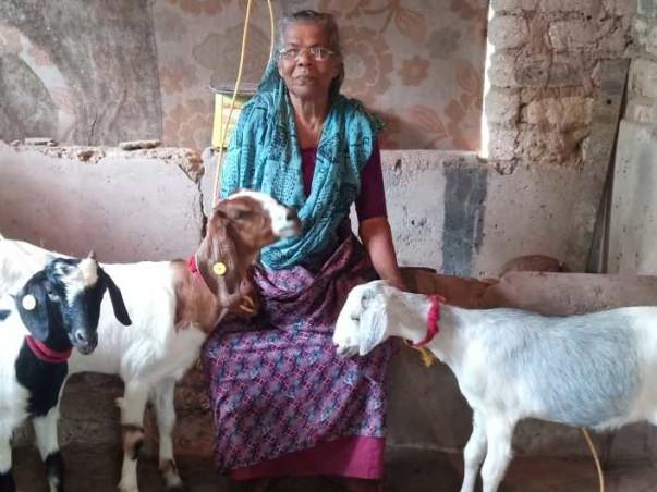 Nilaamazha'21- Fundraiser to support Pallium India's Initiatives